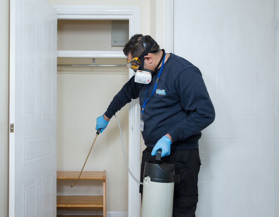 Cleaner sanitising cupboard