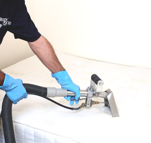 cleaner cleaning a white sofa